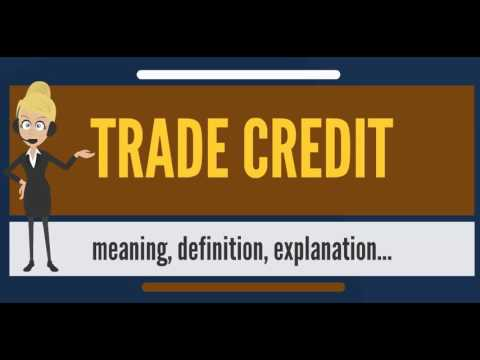 What is TRADE CREDIT? What does TRADE CREDIT mean? TRADE CREDIT meaning, definition & explanation