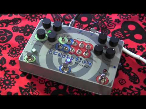 Pigtronix ECHOLUTION multi tap delay pedal demo with Kingbee Stratocaster