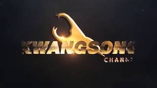 Match Hight | CHANG FA CUP | Singha Chiangrai United 4-2 Police Tero FC