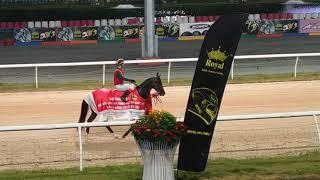 Đi coi đua ngựa 🏇 Đại Nam