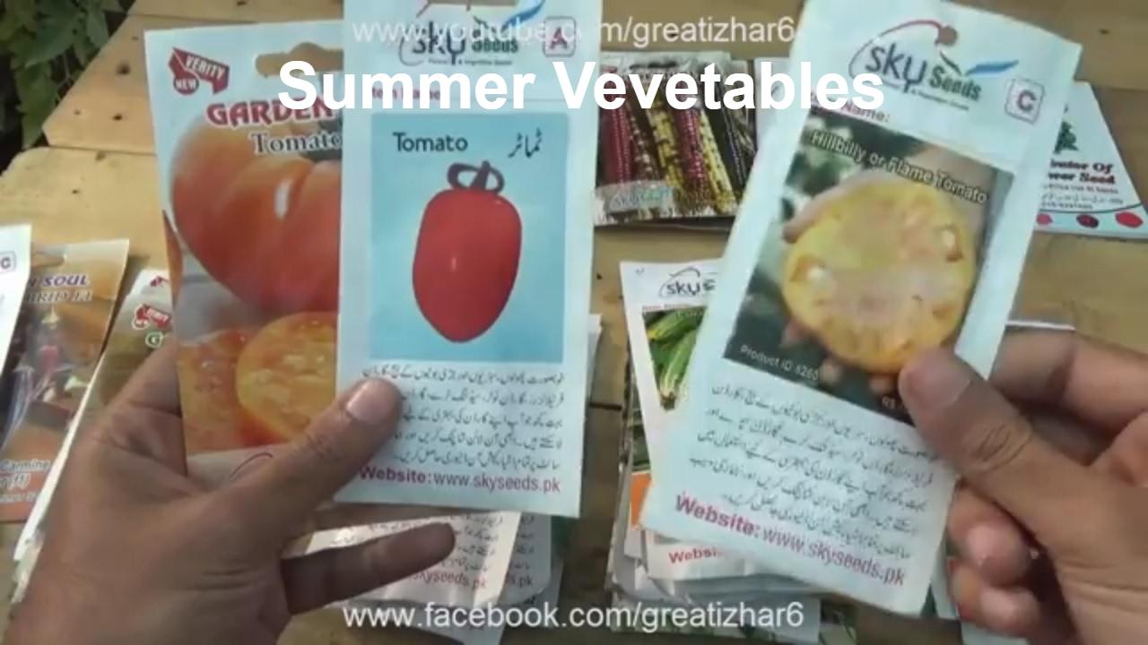 Vegetables Grown in Summer Season | Fastest Growing Vegetables ...