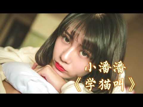【抖音神曲】 小潘潘 & 小峰峰-《学猫叫》 1小时版本 【想要变成你的猫,赖在你怀里睡着...】