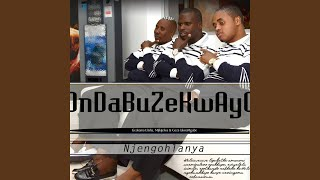 Gambar cover U Zama Ngcobo