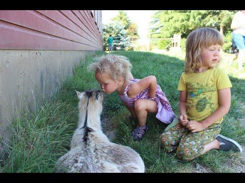 Vegan Family Visits A Farm Sanctuary!