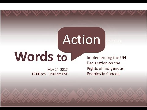 OPHA Webinar:  Words to Action - Implementing the UN Declaration on the Rights of Indigenous Peoples