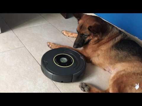 Ataque de la Roomba