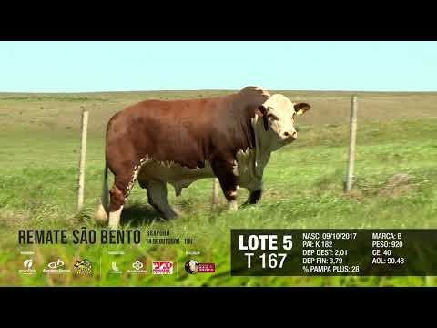 LOTE 05 T 167