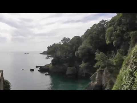 Dartmouth Castle - Devon Holiday Attractions