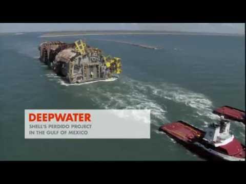 Shell company Video