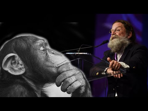 Robert Sapolsky Chimps Have Theory Of Mind Like We Do