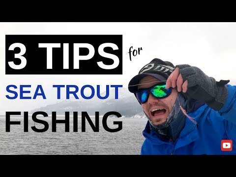 3 Tips For Sea Trout Fishing