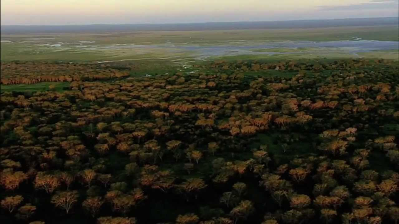 Africa\'s Lost Eden Trailer - YouTube