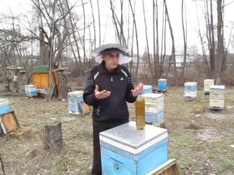 Весенняя профилактика болезней пчел часть 2 Март 2016г.