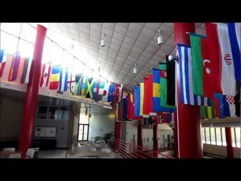 Американский колледж на берегу океана