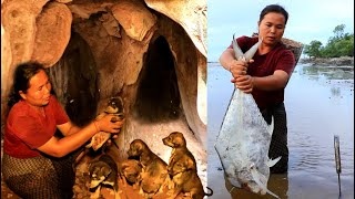 survival in the rainforest - finding 7 dog & cook big fish for dog with woman - Eating delicious HD