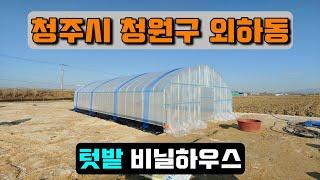 텃밭 비닐하우스 (청주시 청원구 외하동) crop cu…