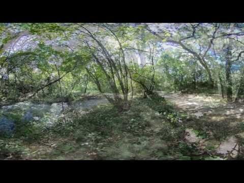 Vasona Park, California. 360 3D VR Stereo Cardboard
