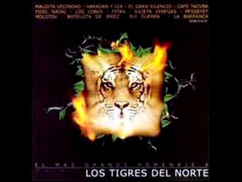 Botellita de Jerez - Jefe de Jefes (Tributo a Los Tigres del Norte) HQ