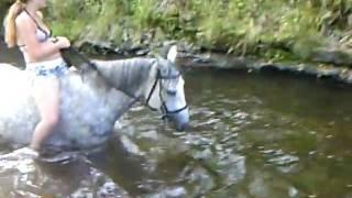 Mit Pferden baden gehen