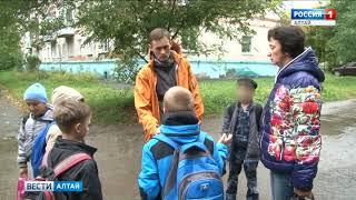В Барнаульском посёлке Южный неизвестные убивают кошек