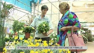 FEUILLETON : À Tarbes, l'horticulture est une histoire de famille