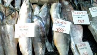"""Цены на рыбу в Томске многим не по зубам. """"Цены не снимать!"""""""