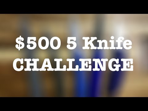 $500 5-Knife Challenge - What Would YOU Buy???