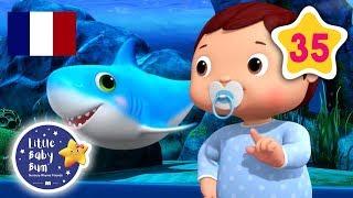 Bébé Requin | La Dance du Baby Shark! | Comptines et Chansons Pour Bébés | Little Baby Bum Français