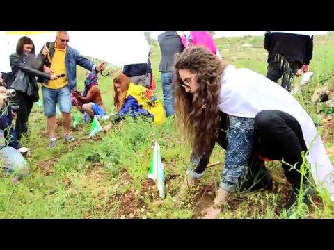 Eurovision Song Contest Participants Plant Trees in Israel
