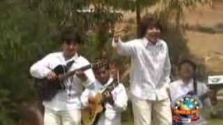 Signnos - El Alisal