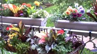 How To Balcony Gardening With Completed 2 Tier Planters