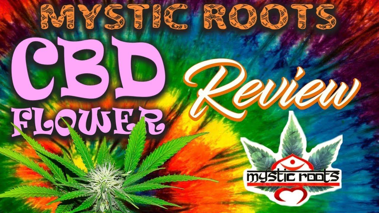 |Mystic Roots| CBD Hemp Flower Review [Lifter & SSC]