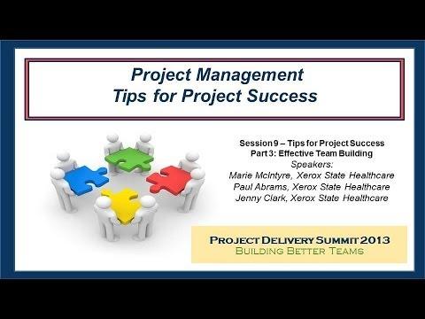 Project Management: Tips for Project Success  Part 3 Effective Team Building - A PSP Forum