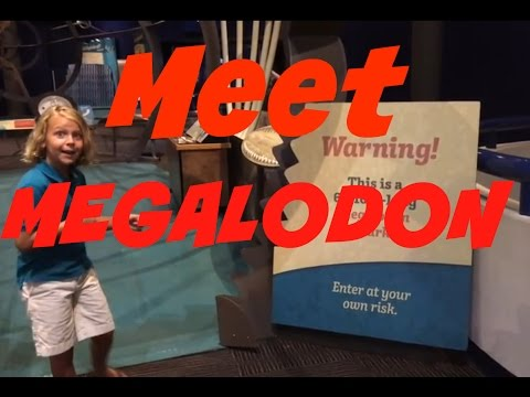 Animal Discoveries: S1 E3  MEGALODON: The Biggest Shark That Ever Lived