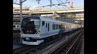 E257系M107編成  集約臨 横浜駅発車シーン