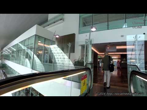 Astonishing Dubai Airport T3 | Delightful Emirates Business Class Lounge | A380-800 | EK29