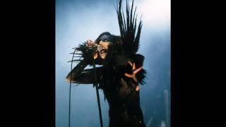 Скачать Astonishing Panorama Of The Endtimes Marilyn Manson Lyrics Video W Pic