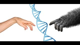 Evolutionary Answers for Dummies & GOP Candidates | Scott Ott Thought