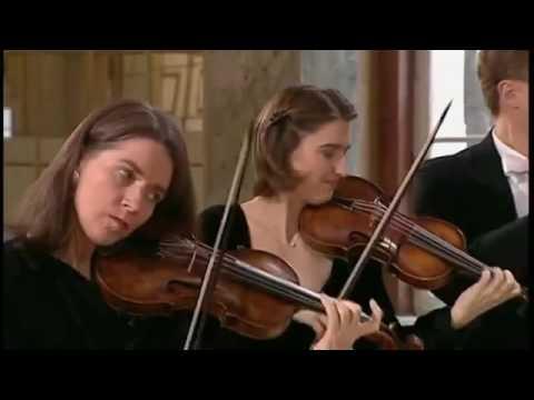 (Jobs 2013 BGM)Brandenburg Concerto Allegro