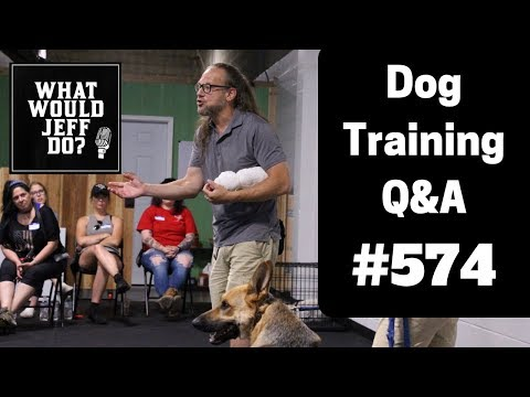 dog-training---stop-dog-resource-guarding---dog-lunging---what-would-jeff-do?-q&a-ep.574-(2019)