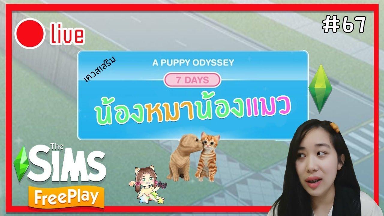 [Live] The Sims FreePlay#67 [เควสเสริม] A PUPPY ODYSSEY น้องหมาน้องแมวตัวน้อย►CHERRY BLOSSOM◄