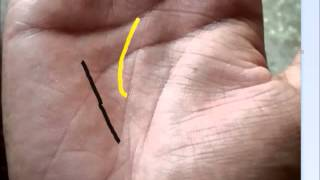 Business partners in detail palmistry
