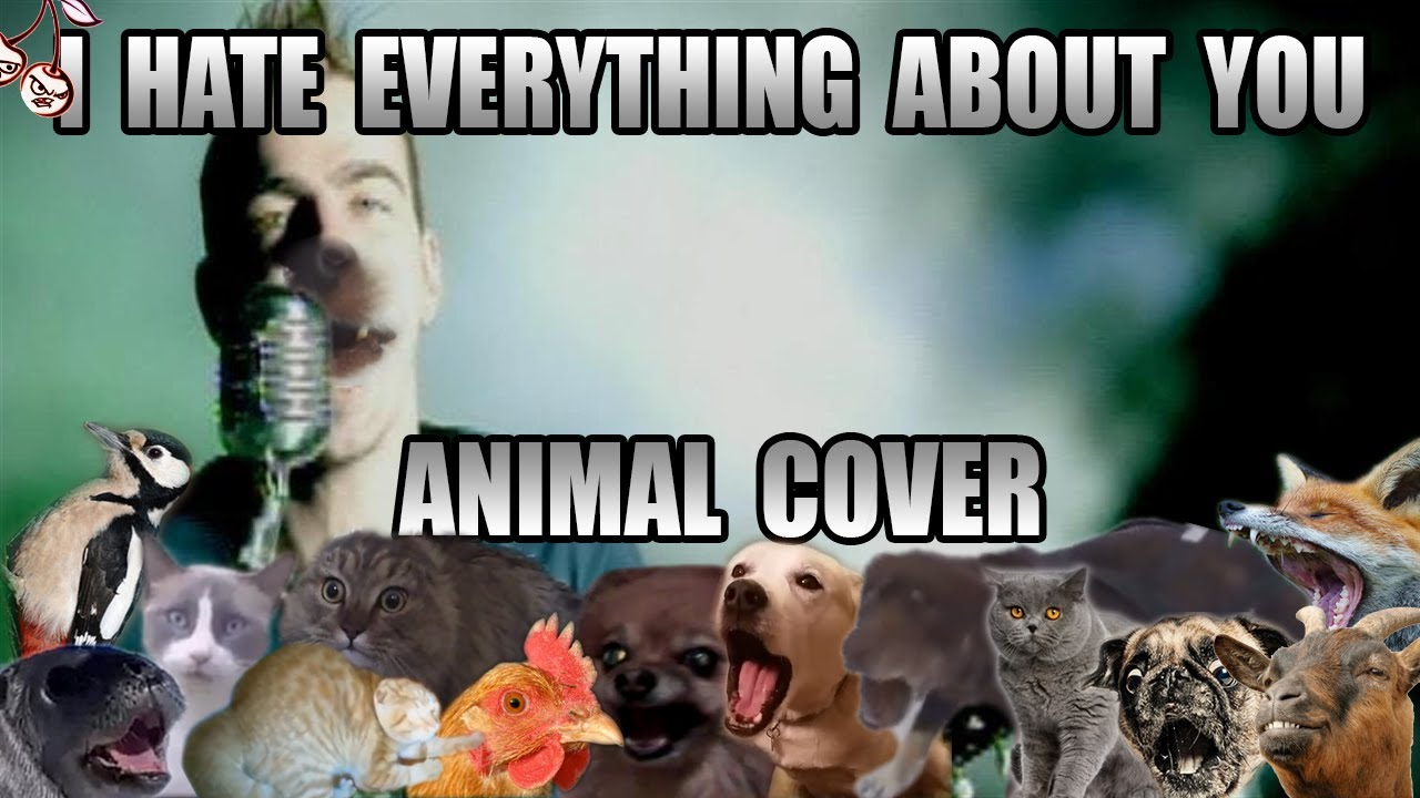 Three Days Grace - I Hate Everything About You (Animal Cover)