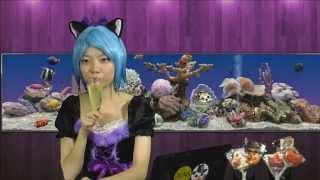 JunsTVチャンネル登録はこちら http://www.youtube.com/user/junstv?su....