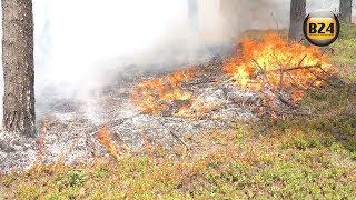 Pożar lasu w Bogumiłowie