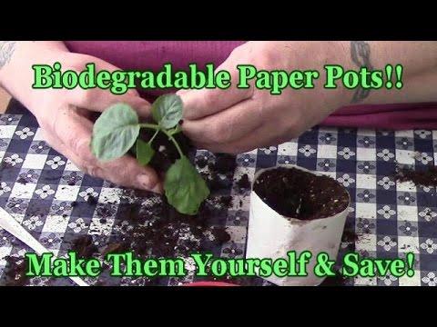 Biodegradable Paper Pots Make Them & Save
