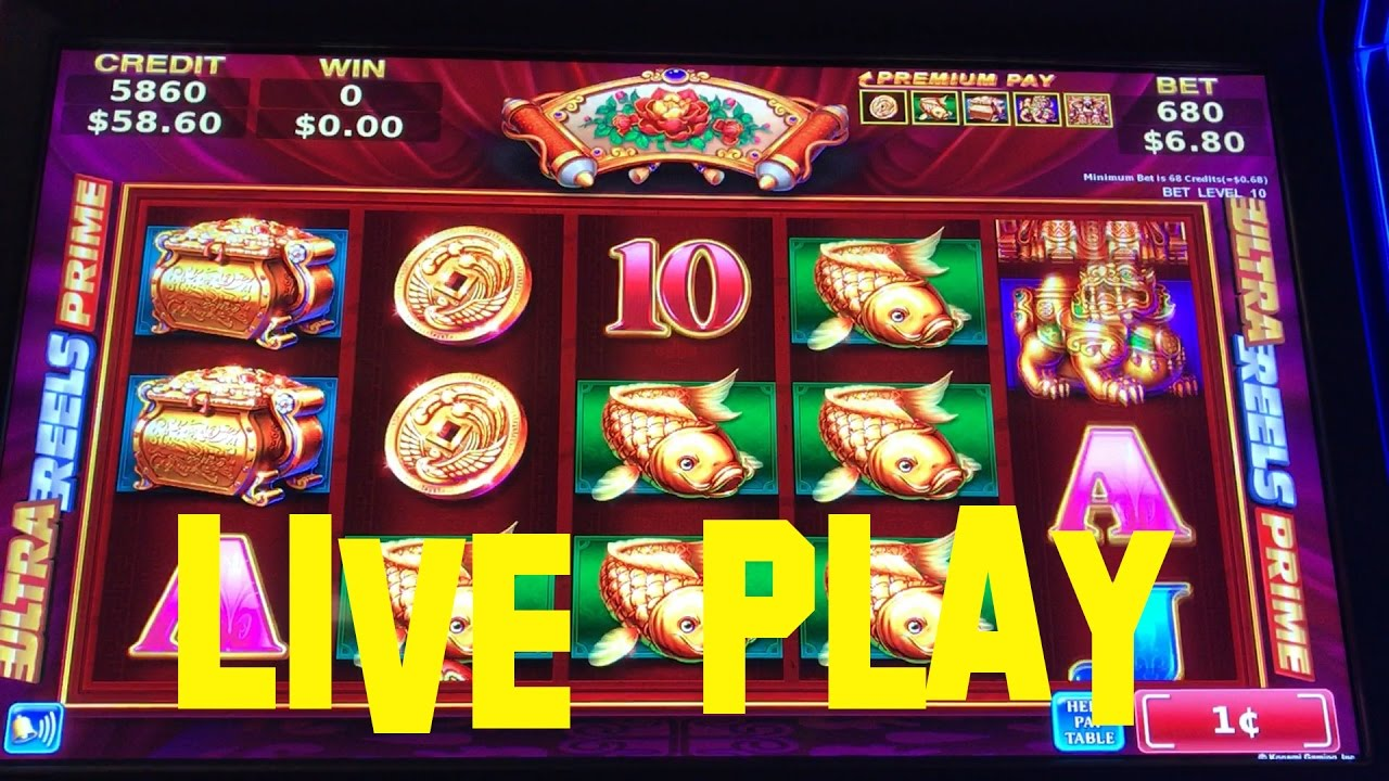 Casino playamo