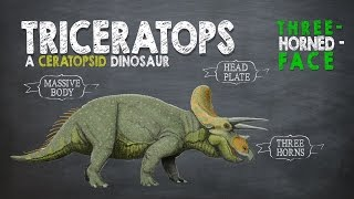 Learn dinosaur facts about Triceratops, the huge herbivorous dinosa...