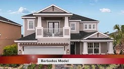 Barbados Model Tour | Eave's Bend at Artisan Lakes | New Homes in Palmetto, FL
