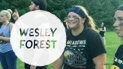 Wesley Forest - Why should I work at summer camp?